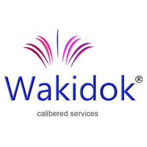 Wakidok-Innovative-Solutions